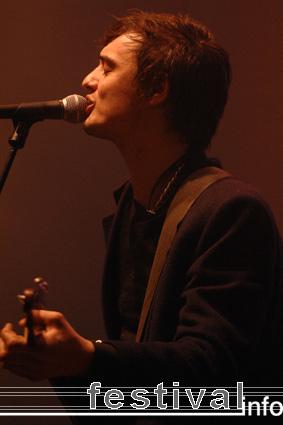 Foto Babyshambles op Rock am Ring 2008