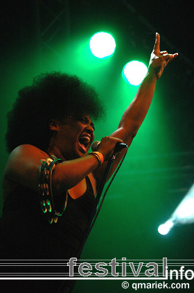 The BellRays op Zwarte Cross 2008 foto