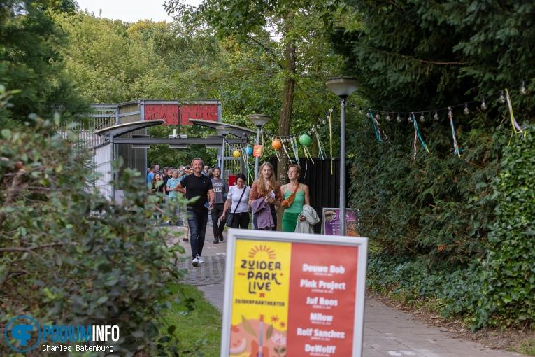 DeWolff - 23/07 - Zuiderparktheater foto