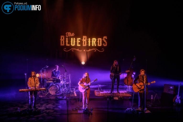 The Bluebirds op The BlueBirds - 30/09 - Energiehuis foto