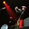 Foto Green Day op Pinkpop 2010