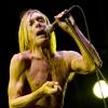 Foto Iggy & The Stooges op Pinkpop Classic 2010