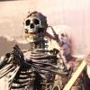 Foto Rob Zombie op Graspop Metal Meeting 2011