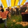 Foto Handsome Poets op Dieksiepop 2011