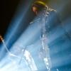 Thin Lizzy foto Thin Lizzy - 8/2 - 013