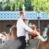 foto Zeven Pleinen Festijn: Ali B. - 11/8 - Efteling