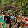 Foto  op Tomorrowland 2013