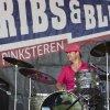 Festivalinfo review: Ribs & Blues 2014