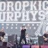 Foto Dropkick Murphys op Rock Werchter 2014