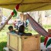 foto Bevrijdingsfestival Overijssel 2016