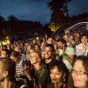 Festivalinfo review: Damien Rice - 07/07 - Paleis Soestdijk