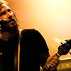 Foto Mastodon te Mastodon - 30/11 - Tivoli