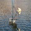 Sfeerfoto Drakenboot Festival Apeldoorn - vrijdag 24 juni 2011