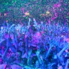 Sfeerfoto Life in Color