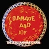 The Jesus And Mary Chain Damage And Joy cover
