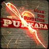 Asian Dub Foundation – Punkara