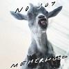 Cover No Joy - Motherhood