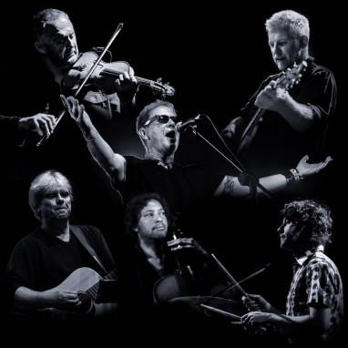 Oysterband news_groot