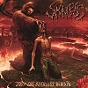 Cover Skinless - Only The Ruthless Remain