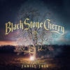 Podiuminfo recensie: Black Stone Cherry Family Tree