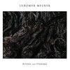Lubomyr Melnyk Rivers And Streams cover