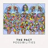 Cover The Pact - Possibilities