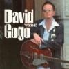 David Gogo - Vibe