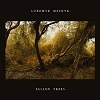 Cover Lubomyr Melnyk - Fallen Trees