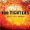Foo Fighters Skin and Bones cover
