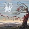 Podiuminfo recensie: Fields Of Troy The Great Perseverance