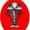 logo Schollenpop