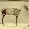 Cover Chadwick Stokes - The Horse Comanche
