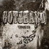 Gotthard Silver cover