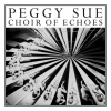 Peggy Sue Choir Of Echoes cover
