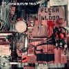 John Butler Trio Flesh & Blood cover