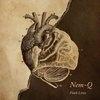 Cover Nem-Q - Fault Lines