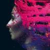 Steven Wilson Hand. Cannot. Erase. cover