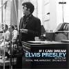 Festivalinfo recensie: Elvis Presley If I Can Dream