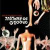 Brazilian Groove Band – Anatomy of love