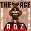 Sufjan Stevens The Age of Adz cover
