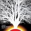 Cover Anne Hytta - Fyrsta Morginn - Music For Voluspa