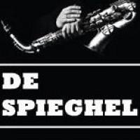 logo De Spieghel Groningen