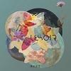 Cover Lesoir - Mosaic