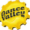 Dance Valley 2017 logo