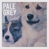 Pale Grey Best Friends cover