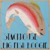 Festivalinfo recensie: Stackhouse Big Fish Boogie