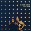 Festivalinfo recensie: DJ Vadim & Sena Grow Slow