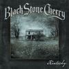 Festivalinfo recensie: Black Stone Cherry Kentucky