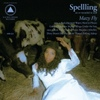 Cover Spellling - Mazy Fly