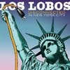 Festivalinfo recensie: Los Lobos Disconnected In New York City